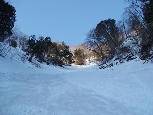 雪崩の通り道.jpg