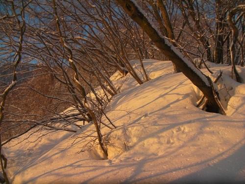 SANY13031朝やけ.jpg